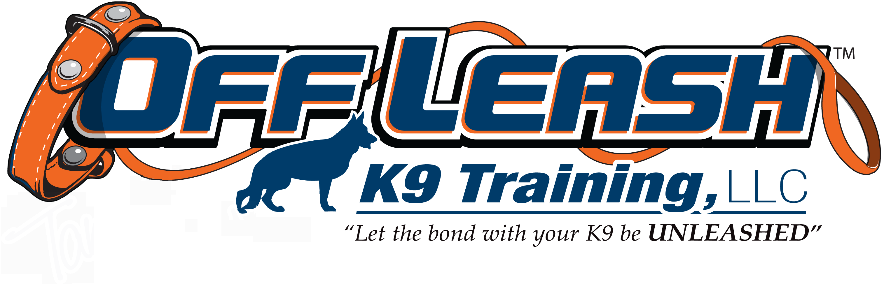 Offleash K9 Celebrity Dog Training